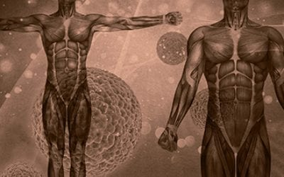 Head, Heart, and Hands:  the Anatomy of Discipleship